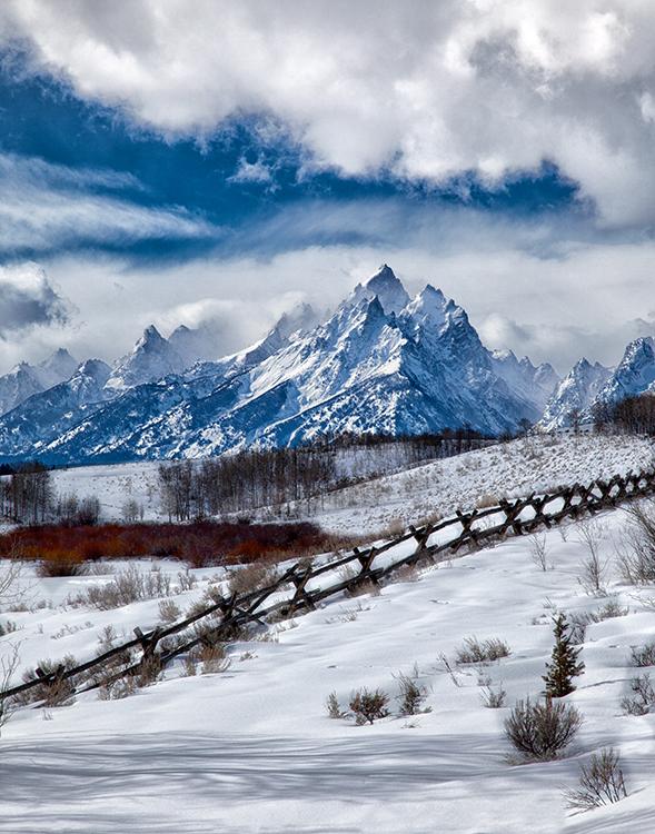 Teton Fence